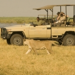 Dwayne Tours and Safaris 3
